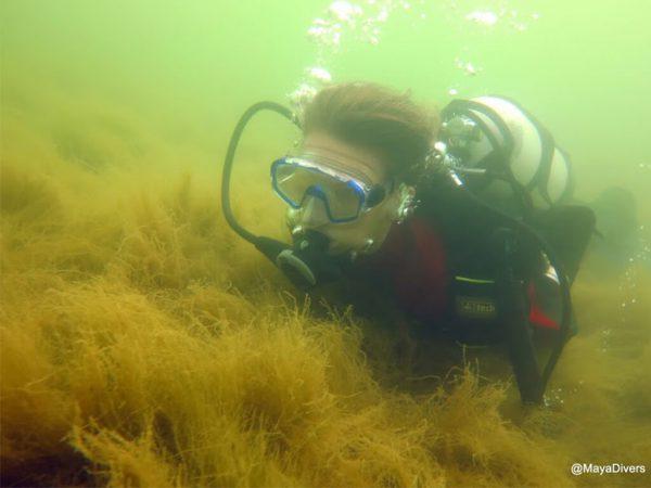 potápění ústí nad labem